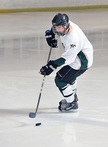 Vista Hockey 2015