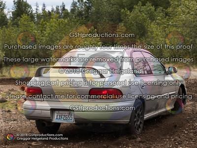 117 2.5 Silverish Gold Sedan Wing Pink Badge