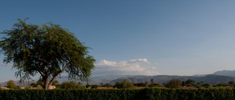 2012 Palm Springs