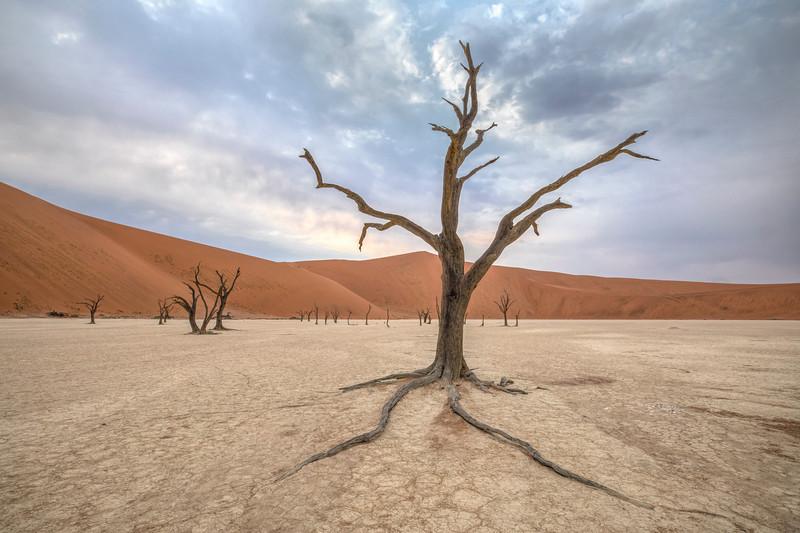 Namibia 69A4184.jpg