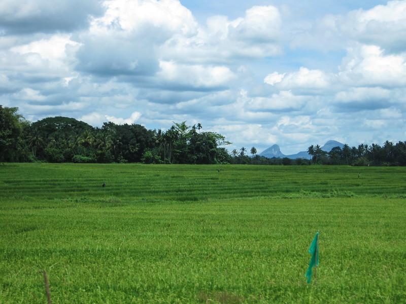 Sri_Lanka17-9928.jpg
