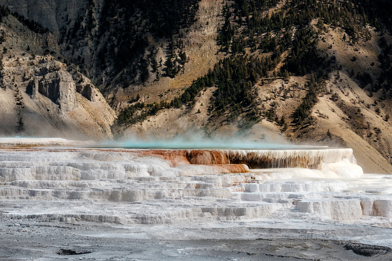Mammoth-Hot-Springs-Yellowstone-Mroczek-2853.jpg