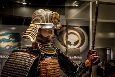 Samurai 2015