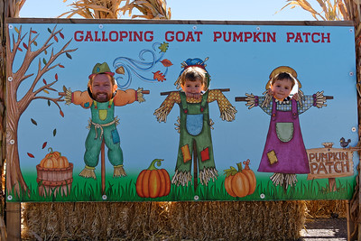 Pumpkin Patch - Oct 11, 2019