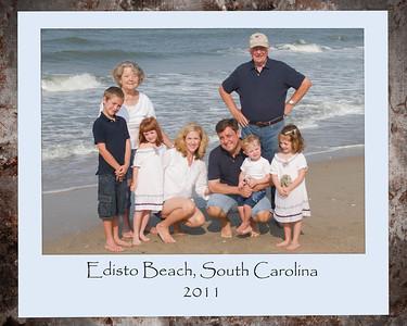 Mood Family 2011