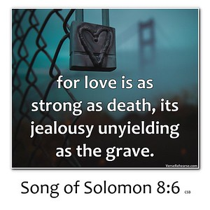 Song of Solomon Memes