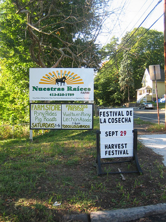 2007 Harvest Festival