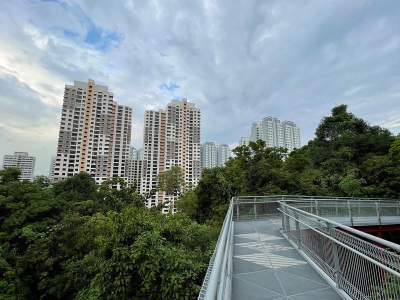 Forest Walk and HDB flats