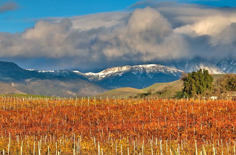 Santa Ynez Valley 11