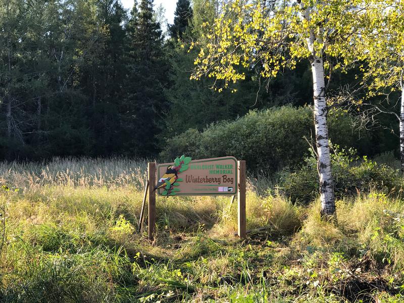 Winterberry Bog sign Murphy Road Sax-Zim Bog MN IMG_1157.jpg
