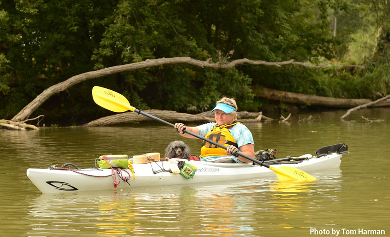 Nith River New Hamburg 14-Aug-12 (5).jpg