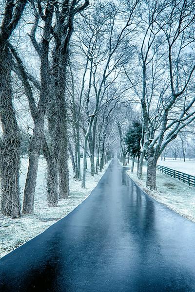 winter%20in%20brentwood_%202013-03-02__rkg_6421_%c2%a9rajnish%20gupta2013_hdr.jpg