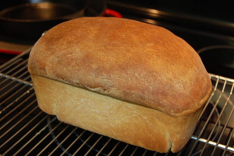 Plain White Bread