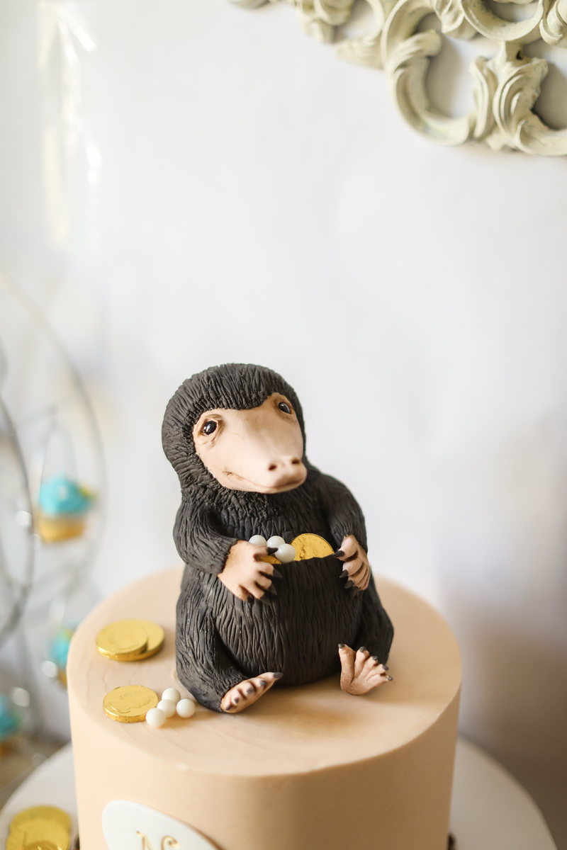 The niffler birthday cake for the 9-year-old birthday.