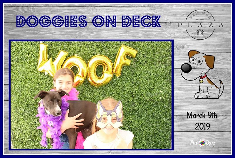 Doggys on Deck45.jpg