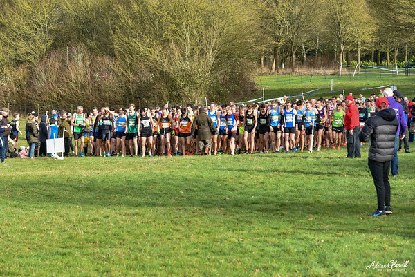Chiltern League Cross Country