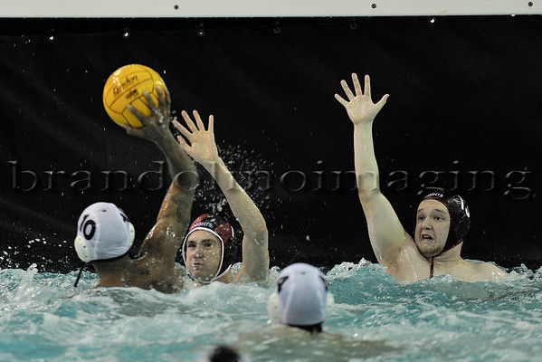 Lincoln-Way Central Boys Water Polo (2012)
