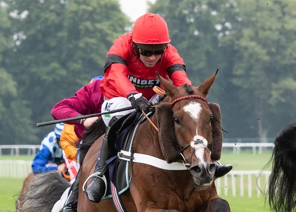 Race 6 - Haul Away
