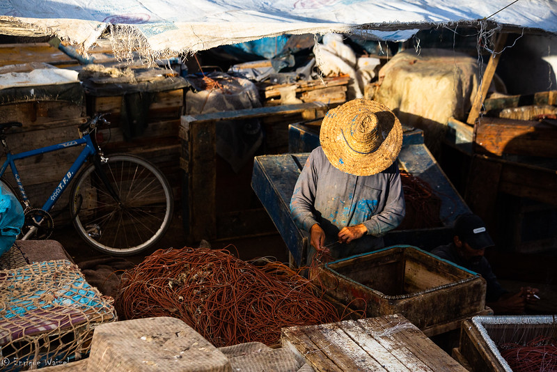 Essaouira fisherman 2.jpg