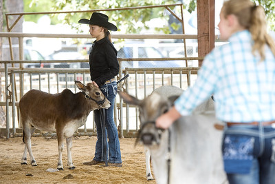 east-texas-state-fair-reports-lower-attendance-numbers-compared-to-2016
