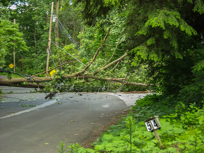 6-10-06 Tree And Wires Down, Winston Lane
