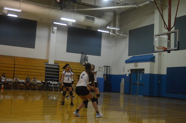 2019-2020 Volleyball game