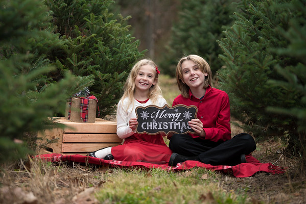 Tree Farm Photo Sessions 2016