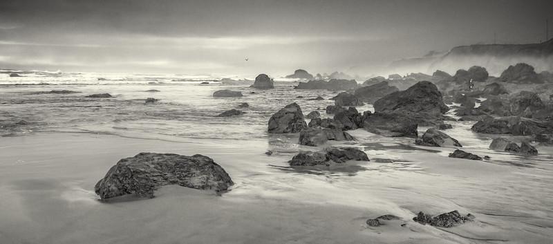 Bodega Bay.