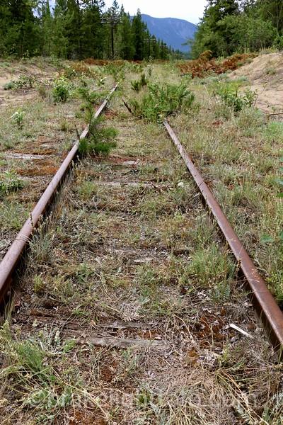 Abandoned Rail LIne
