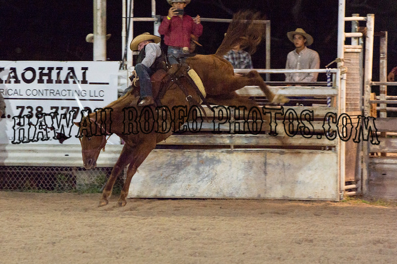 RANCH SADDLED BRONCS