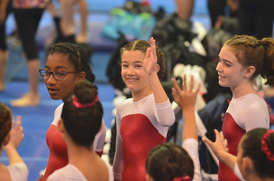 Lindsey Gymnastics