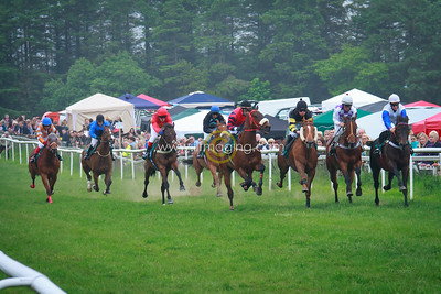 Common Riding Friday - Picnic & Races, 2016