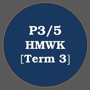 P3/5 HMWK T3