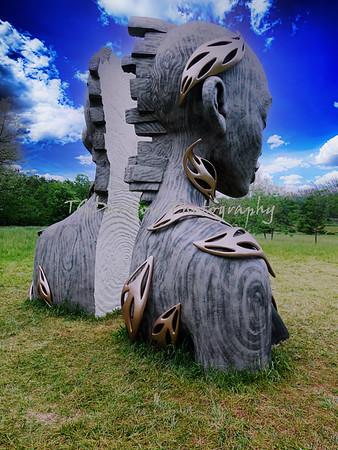 Morton Arboretum/Daniel Popper Sculpture 5/25/21