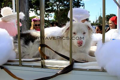 Haute Dog Howl'oween Parade 10/26/14