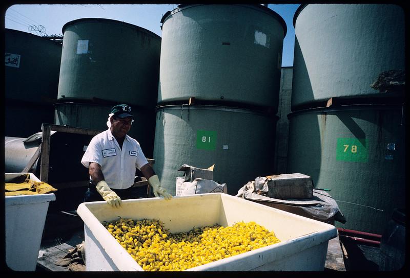 Walker Foods, Inc., Los Angeles, 2004