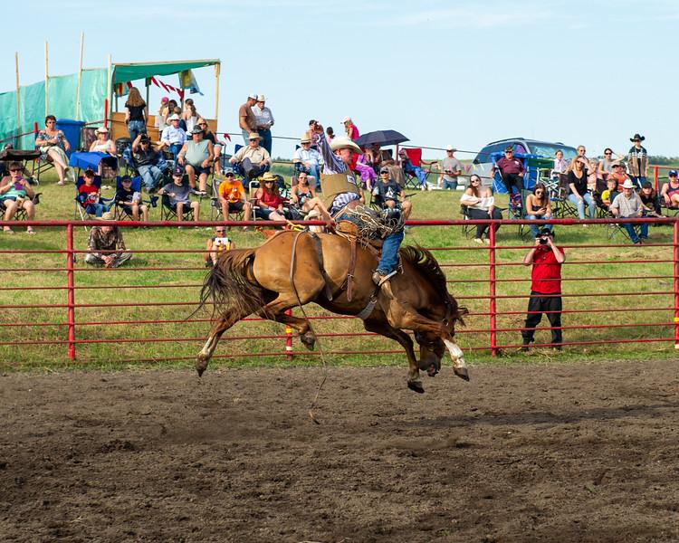 Rodeo_tests-008.jpg