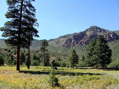 AZ Trail Hike, near Flagstaff, 8-15-09