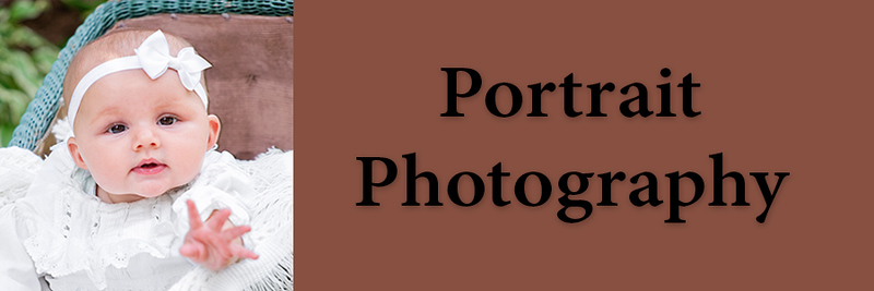 4 2018  revised 1x3 Portrait Photography Tab.jpg