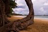 Castle Beach, Kahuku