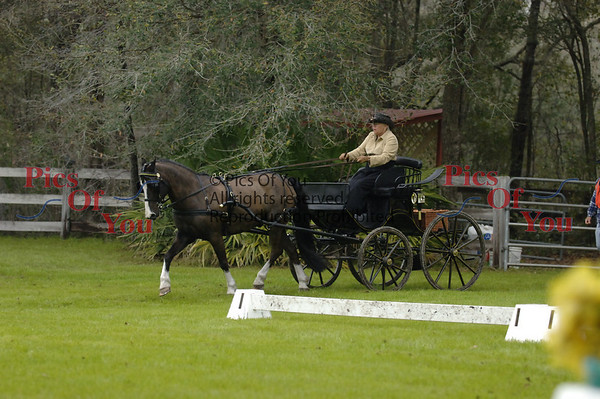Black Prong HDT 3-2008 (Bronson, FL)