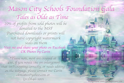 Mason School Foundation Gala