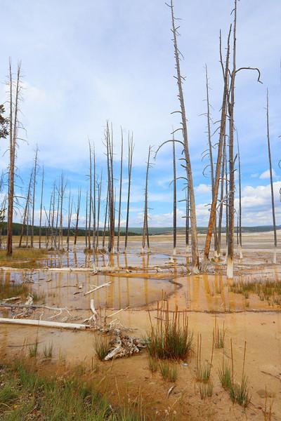 Yellowstone 092.JPG