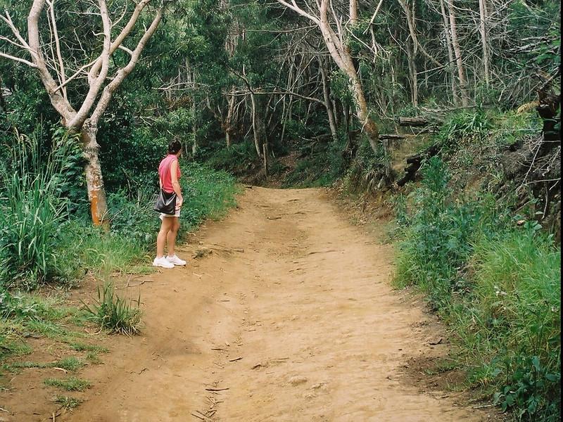 Hawaii-584.jpg