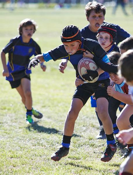 1221_09-Nov-13_RugbyOrcasitas.jpg