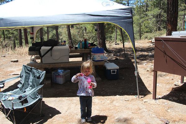 First Family Camping Trip