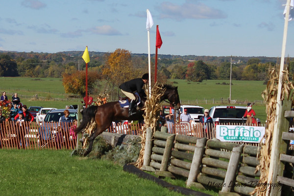 2015-10-10 Steeple Chase Races