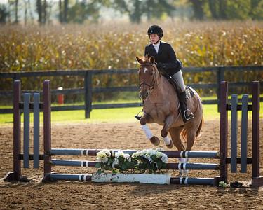 Lauren Horse