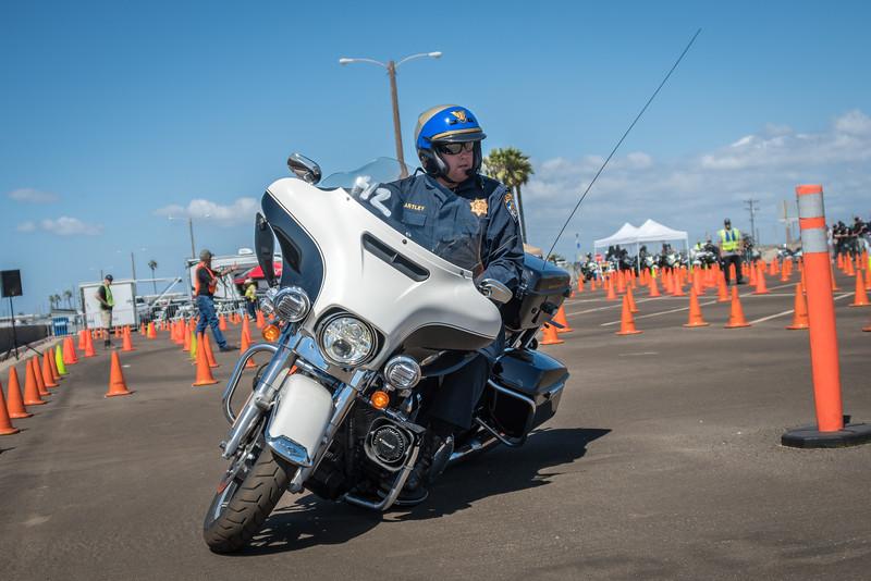 Rider 42-44.jpg