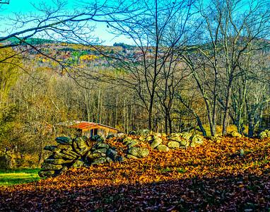 Windham Landscape